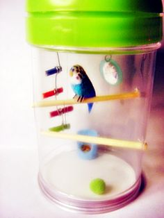Miniature Parakeet in a Toothpick Holder Cage by June Girardi