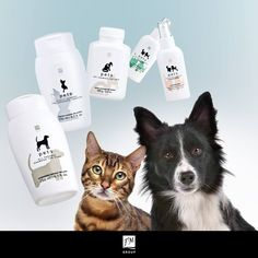 Our cosmetics for animals developed out of concern for proper care of your pet   Take care of your pet ➡Shop here => http://www.fmgroupuk.net/shop.html ➡Not registered? Registration as VIP client is free and you will get lifetime discount more than 30%?=> http://register-uk.fmworld.com/sponsor/801002207