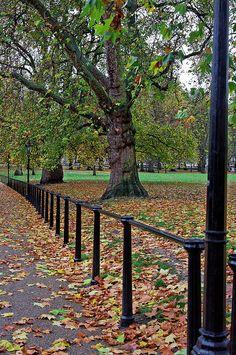 Along Queen's Walk, Green Park, London