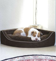 With our Animals Matter Corner Lounger Pet Bed your pet will feel safe and comfortable tucked away in a cozy corner of the room.