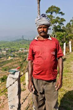 Munnar - India