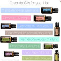Hair Loss Essential Oils, Essential Oil Uses, Doterra Geranium, Doterra Peppermint, Hair Breakage, Doterra Essential Oils, Diffuser Blends, Wellness, Essential Oils