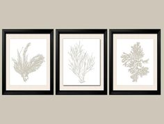 Revere+Pewter+Wall+Art+Gray+Sea+Coral+Print+by+BeachHouseGallery,+$29.99