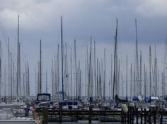 Masten im Hafen, Maasholm - Foto: S. Hopp