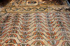 Ravenna - San Vitale - floor mosaic 6thC.