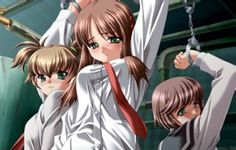 Perverse Investigations Hentai Anime DVD Review