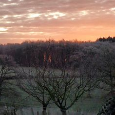 A beautiful sky with the -5 frosty morning :) Both fires are lit and now it's time to get burning on Willow and Oak pendants today :) www.etsy.com/shop/SpidertreeEmporium  #witchywoman #hippiewitch #witch #witchcraft #witchesofinstagram #pagan #pagansofinstagram #paien #wiccansofinstagram #wiccan #eclecticwitch #solitarywitch #hedgewitch #greenwitch #naturewitch #natureworshipper #magickalmornings #magickal