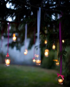 votives hanging by ribbons from a tree.