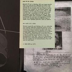 """A.P.C. archive """"Une vie de chien"""". A publication designed by M/M (Paris) gathering lost dogs flyers. Regram from @inezandvinoodh @mmparisdotcom #apc by apc_paris"""