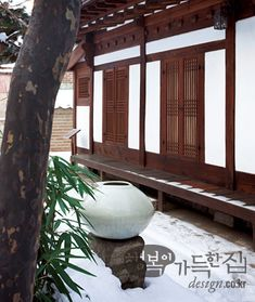 Courtyard of Korean house, Full moon pot, Bamboo tree Traditional Interior, Korean Traditional, Traditional Furniture, Traditional House, Bamboo Tree, Earthship, Home Projects, Sweet Home, Architecture