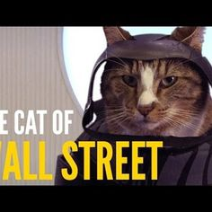 These Famous Movie Scenes Are Better With Cats