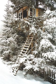 treehouse...I just wanna go hide in here for a couple of weeks with some books & a coffee pot