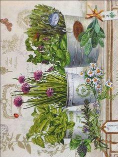Decoupage Vintage, Vintage Paper, Vintage Art, Vintage Pictures, Vintage Images, Flower Prints, Flower Art, Scrapbooking Vintage, Deco Champetre