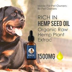 Organic Hemp Essential oil for dogs Pet Care  Price: 18.34 & FREE Shipping  #esoteric4 Essential Oils For Pain, Natural Essential Oils, Anxiety Relief, Stress And Anxiety, Oils For Dogs, Flea And Tick, Organic Oil, Hemp Oil, Fleas
