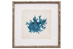 Turquoise coral framed art (Mirror Image)
