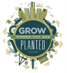 Grow Where You are Planted, #typography