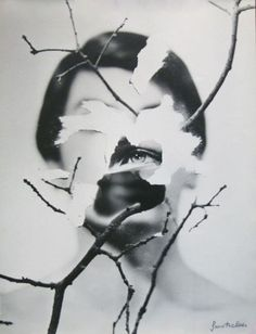 regardintemporel:    Hubert Grooteclaes - Visage Féminin et branche
