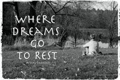 We don't always have to achieve our dreams to rejoice. Sometimes we rejoice when they go to rest.