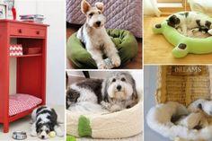10 modèles de lits pour chiens et chats à faire en récupérant des trucs de la…