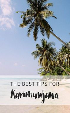 The best tips for traveling to Karimunjawa