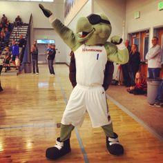 Santa Cruz Warriors Mav'Riks @dleaguewarriors @grindouthunger