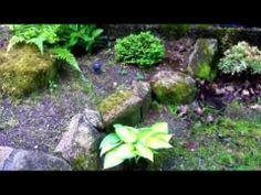 MyJapaneseGarden - Suikinkutsu Spring 2014 - YouTube