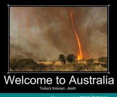 Totally Crazy Things Seen in Australia photos) Memes Humor, Funny Memes, Meanwhile In Australia, Aussie Memes, Australia Funny, Perth Australia, Funny Signs, Funny Photos, The Funny