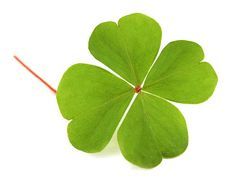 There's something about a four leaf clover.