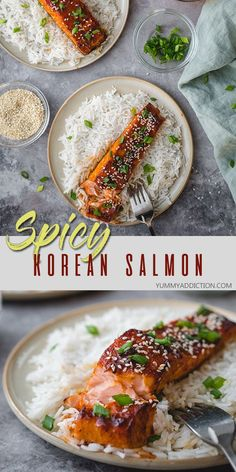 Step up your salmon game with this Korean inspired gochujang glazed salmon! Spicy, savory, and sweet at the same time, it Recipe Using Salmon, Quick Salmon Recipes, Easy Asian Recipes, Fish Recipes, Seafood Recipes, Healty Dinner, Paleo Dinner, Healthy Dinner Recipes, Dessert Recipes