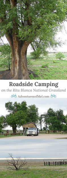 The Rita Blanca National Grassland is a quiet place to stop and camp overnight on a road trip to Colorado or New Mexico. Off the beaten path, roadside camping is allowed at the Thompson Grove Picnic Ground near Dalhart, Texas. The grassland stretches on f