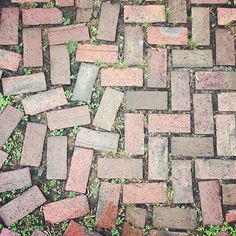I love how this herringbone pattern breaks away into randomness. I found this paving in someone's driveway. Not sure if it was intentional, but so neat.