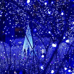 These solar-powered (Blue) decorating lights are simply brilliant:No energy costs; No outlet needed100 lights, 55 feet length / 16m 76cmDecorate anywhere without dangerous extension cordDifferent Modes of flashingAlso available in Warm W...