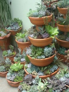 Layer your pots and have a beautiful cascade of succulents!