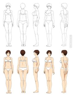 Anime anatomy, full body (commission) by Precia-T on DeviantArt - Anime anatomy, full body (commission) by Precia-T.devianta… on - Girl Anatomy, Body Anatomy, Anatomy Drawing, Female Character Design, Character Modeling, Character Art, Art Poses, Drawing Poses, Drawing Female Body
