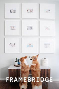 Surprising 46 Best Framebridge Gallery Walls Images In 2019 Gallery Machost Co Dining Chair Design Ideas Machostcouk