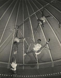 «ça, cest du cirque» photographies du film tchèque de 1955. la vie dun cirque : acrobates, clowns, jongleurs, dresseurs danimaux