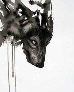wolf watercolor piece.  Excellence.