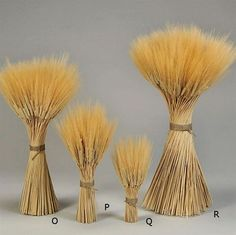 Triticum wheat stacks,3LB & 5LB Grande Size. Great wheat centerpiece for tables from drieddecor.com
