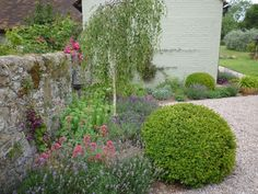 Converted farm courtyard garden by London garden designer Claudia de Yong Courtyard Design, Garden Design, Lavender Hedge, Stone Farms, Australian Native Garden, Herbaceous Border, London Garden, Gravel Garden, Green Lawn