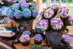Cristina Cooks: Hydrangea Cupcake Bouquet | Home & Family | Hallmark Channel