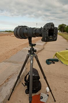 Nikon 600mm f/4 AF-S II w/ Nikon D3 & Gitzo GT3531s by ScottyG927, via Flickr