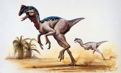 Dinosaurs neither warm-blooded nor cold-blooded. Metabolic analysis suggests they could regulate body temperature, but only to a point.