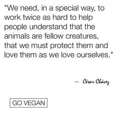 Help spread the message of love and compassion #GoVegan