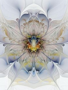 Mirrored Blossom / Fractal art