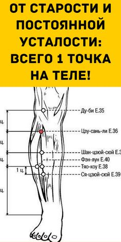 Acupressure Therapy, E 38, Creepypasta Characters, Foot Reflexology, Muscle Anatomy, Sports Massage, Lymphatic System, Michelle Lewin, Boxing Workout