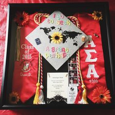 My sorority/college shadow box! & How to Make a Shadow Box for a Graduation Gown   Shadow box Gowns ... Aboutintivar.Com
