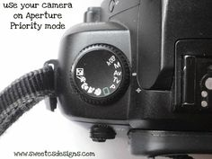 learn how to use your camera in aperture priority mode- a great place for DSLR beginners to start and get great, beautiful shots with blurry backgrounds!