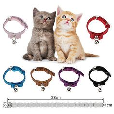 Cat Collars Quick Release