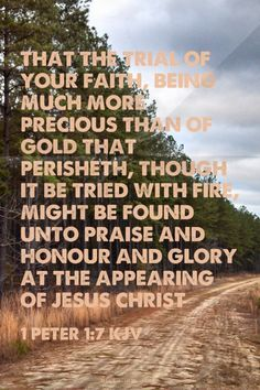 That the trial of your faith, being much more precious than of gold that perisheth, though it be tried with fire, might be found unto praise and honour and glory at the appearing of Jesus Christ - 1 Peter 1:7 KJV | Shasta made this with Spoken.ly