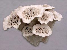 Elizabeth Shriver: Deep Forest Flora, 2011, Ceramic, 13 x 18 x 13 in.